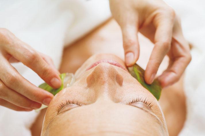 Kosmetikbehandlung mit Aloe Vera Frischpflanzenblatt